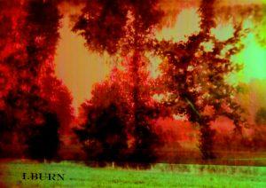 1 Burn